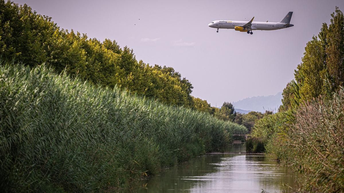Barcelona 07/09/2021 Sociedad. Ampliacion aeroport, generiques de la zona a ampliar, Ricarda, etc...La Ricarda y sus alrededores. AUTOR: MANU MITRU .
