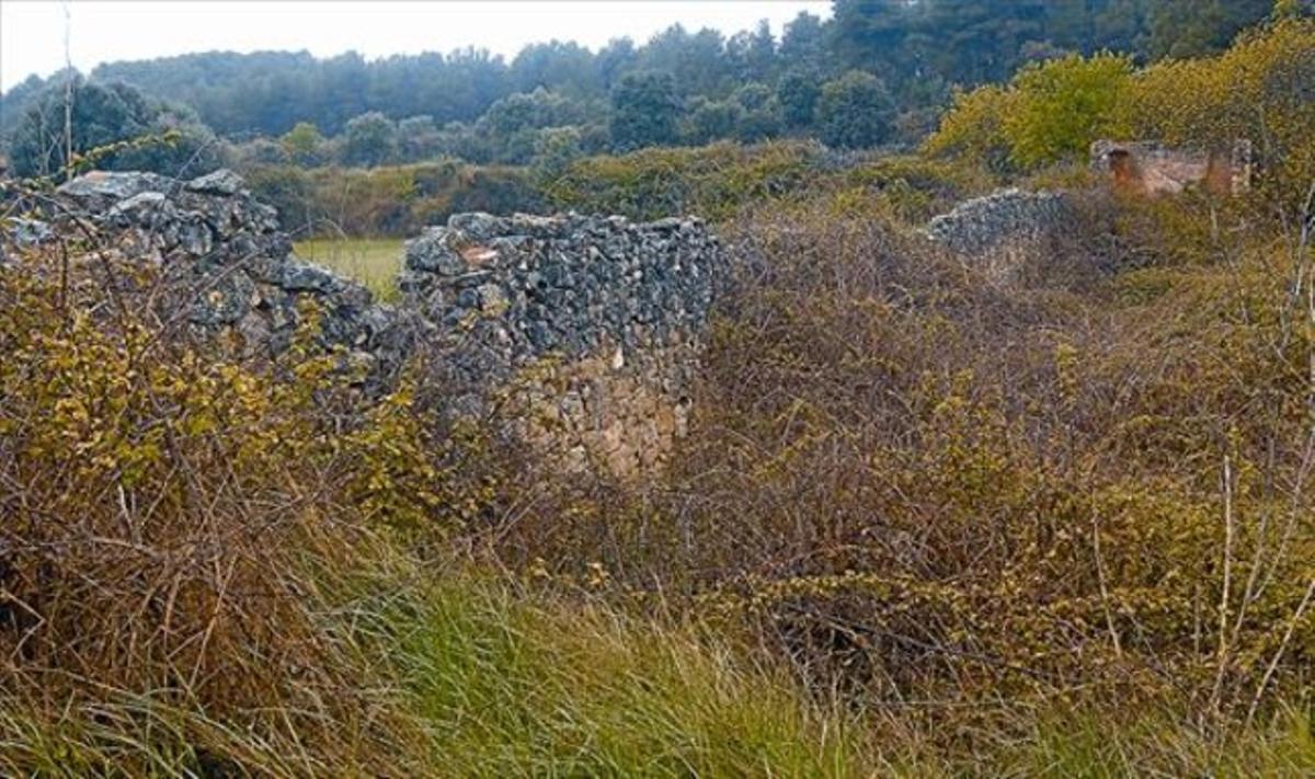 Frente de Gandesa 8 Ruinas del Mas del Pou del Baró, utilizado como hospital de campaña y donde los expertos creen que hay una fosa.