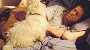 Hugh Laurie, en la serie 'House', acompañado del perro Hector