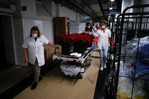 El personal del Clínic reparte las rosas enviadas por el Gremi de Floristes de Catalunya.