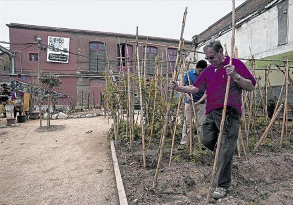 Los huertos de Can Batlló, el pasado mes de abril.