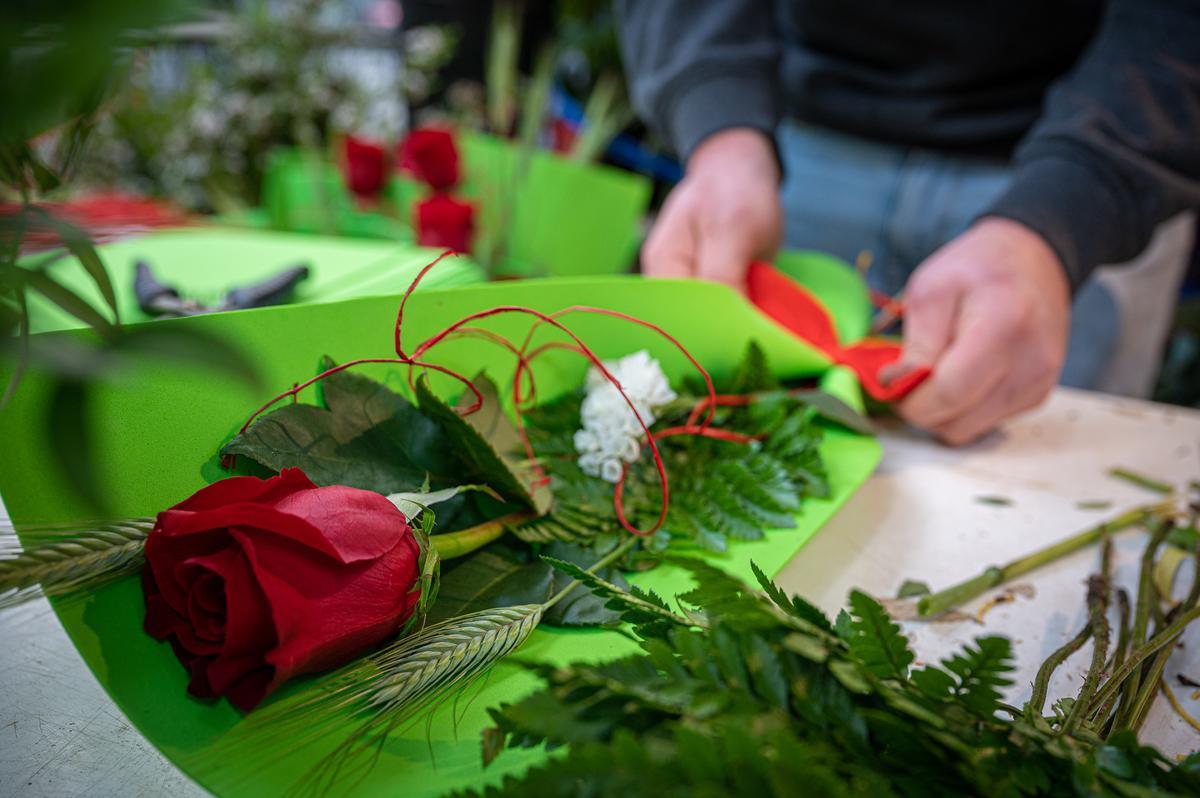 Un florista preparando una rosa para ser vendida en Sant Jordi.