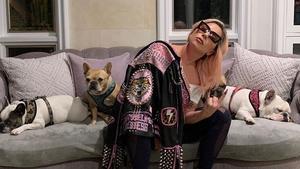 Lady Gaga, con sus perros.
