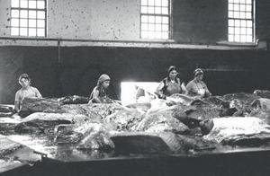 Cuatro trabajadoras de la factoría de Caneliñas despiezan un ejemplar en 1981.