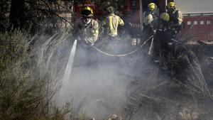 Bomberos en los trabajos de extinción del incendio de la Ribera d'Ebre.