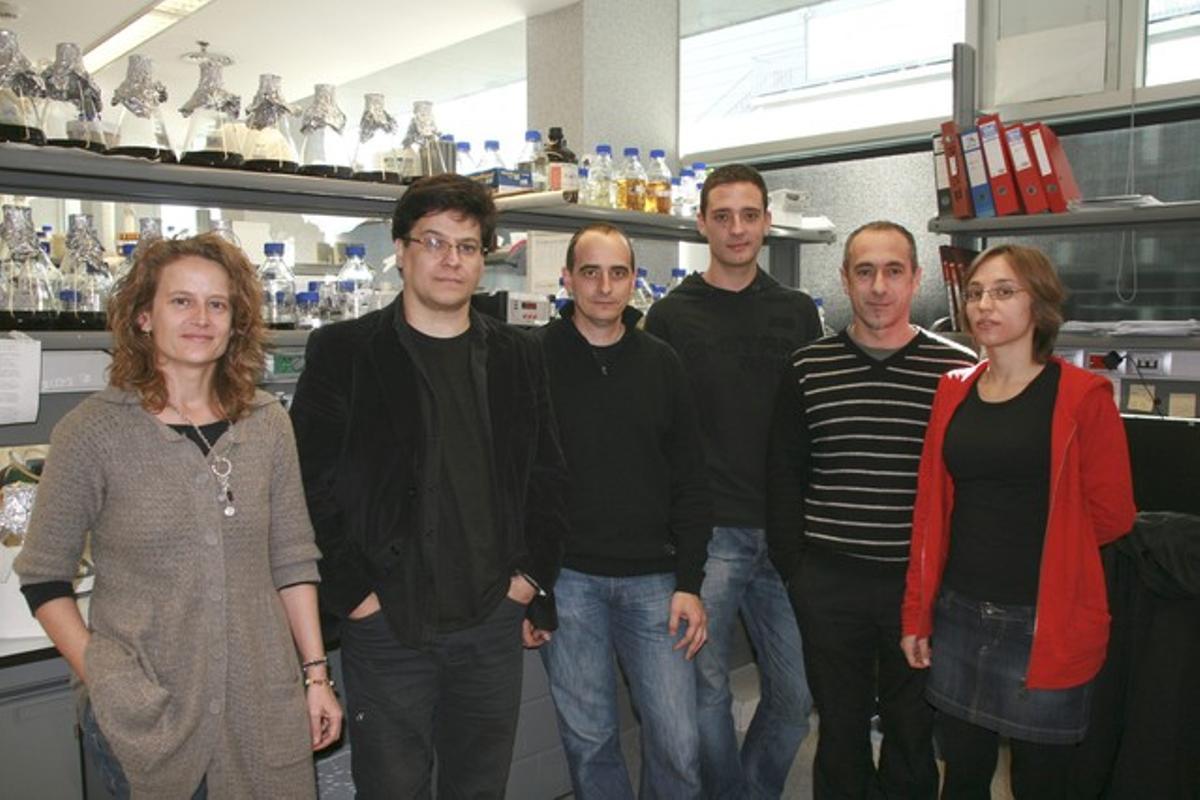 Eulàlia de Nadal, Ricard Solé, Francesc Posas, Sergi Regot, Javier Macia y Núria Conde, de izda a dcha, el grupo de investigadores de la Universitat Pompeu Fabra.
