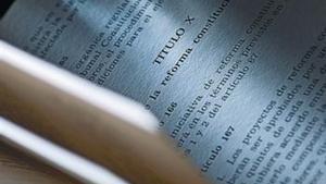 Un ejemplar de la Constitución.