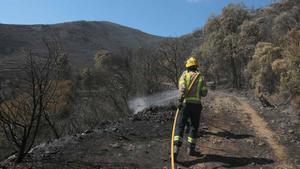 Estabilizado el incendio del Cap de Creus tras quemar más de 400 hectáreas. En la foto, un bombero trabaja en la zona afectada.