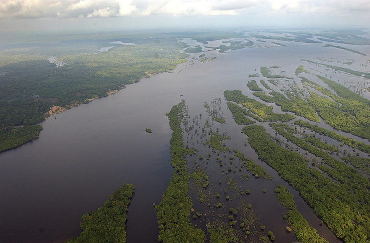 La Amazonia brasileña.