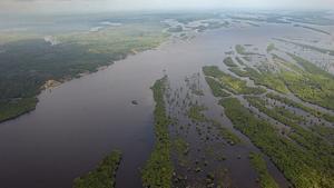 L'Amazònia brasilera.