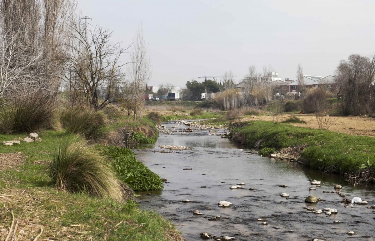 Río Tenes