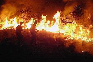 Bomberos combaten un incendio en el Amazonas (Brasil).