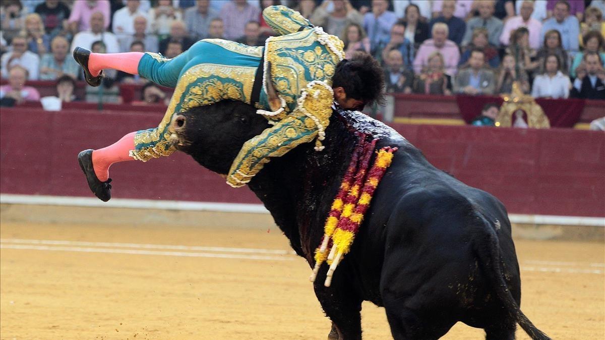 El diestro Cayetano Rivera es cogidodurante la corrida de la Feria del Pilar de Zaragoza.