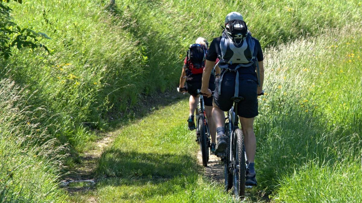Ciclistas por la montaña.