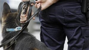 Un perro policía en una foto de archivo.