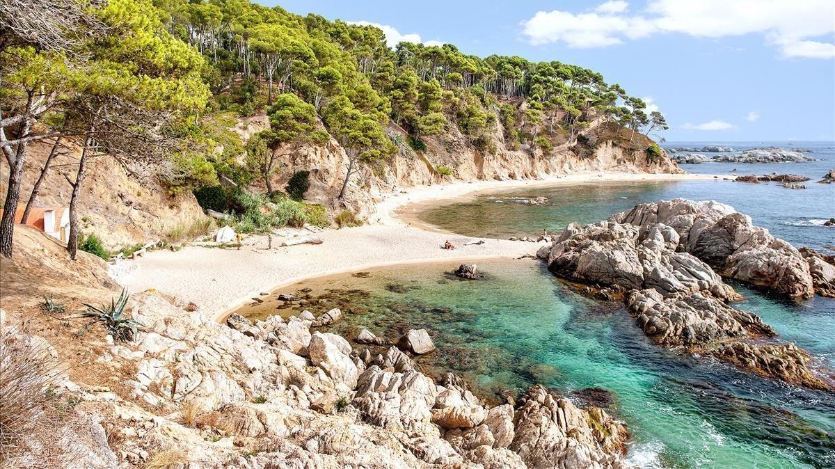 El epicentro se ha situado, concretamente, a unos cincuenta kilómetros de la costa de municipios como Palamós.
