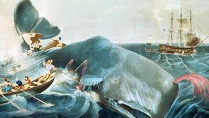 Moby Dick: com domar un monstre (de mil pàgines)