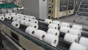 Parlem del paper higiènic