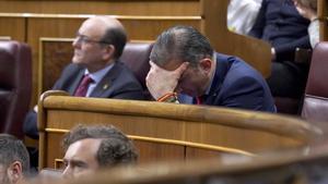 El diputado de Vox, Javier Ortega Smith, en una sesión del Congreso.
