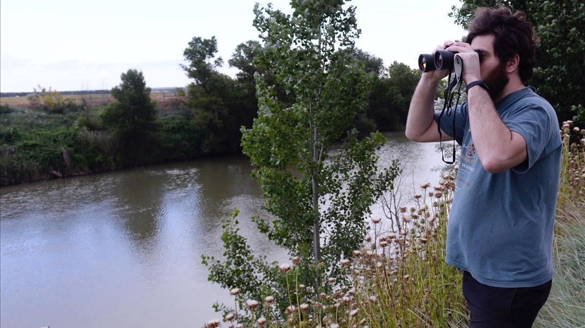 Un joven busca con prismáticos el cocodrilo avistado en la zona de Pesqueruela, en Simancas (Valladolid).